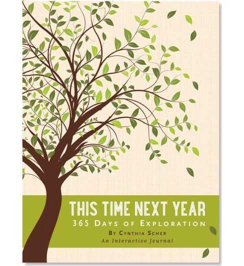This Time Next Year : 365 Days of Exploration (Hardcover) (Cynthia Scher) - image 1 of 1