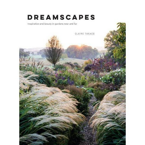 Dreamscapes - by  Claire Takacs (Hardcover) - image 1 of 1