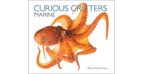 Curious Critters : Marine (Hardcover) (David Fitzsimmons) - image 1 of 1