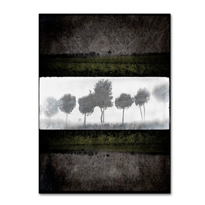 Black Tree 2' by Lightbox Journal Ready to Hang Canvas Wall Art