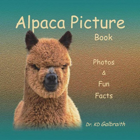 Alpaca Picture Book - by  K D Galbraith (Paperback) - image 1 of 1