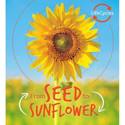 From Seed to Sunflower - (Life Cycles) by  Camilla De La Bedoyere (Hardcover) - image 1 of 1