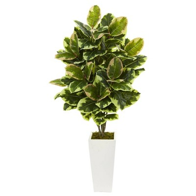 4ft Artificial Variegated Rubber Leaf Plant In White Tower Vase - Nearly Natural