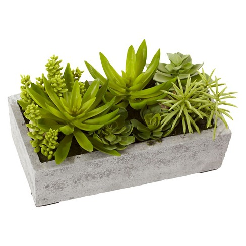 Nearly Natural Succulent Garden with Concrete Planter - image 1 of 3