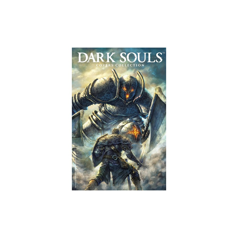 Dark Souls Cover Collection - (Hardcover)