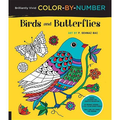 Brilliantly Vivid Color-By-Number: Birds and Butterflies - (Brilliantly Vivid Color by Number) - image 1 of 1