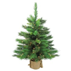 Northlight 3' Prelit Artificial Christmas Tree New Carolina Spruce - Clear Lights