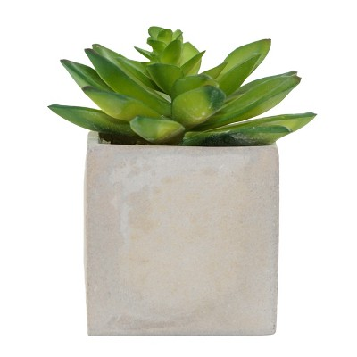 4.5  x 4.1  Artificial Succulent Arrangement In Cement Pot Green/Gray - Lloyd & Hannah