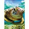 Buffalo Games Earthpix: Turtle Swimmer Puzzle 500pc - image 4 of 4