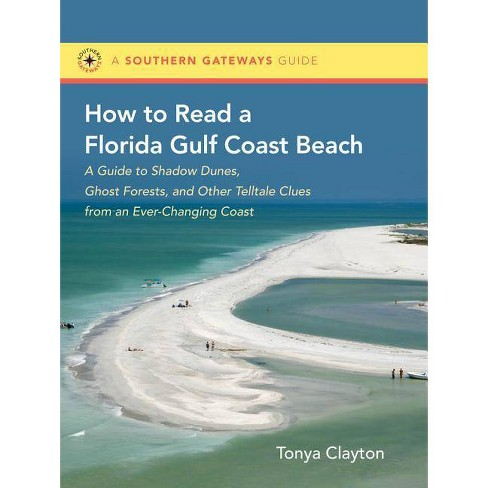 How to Read a Florida Gulf Coast Beach - (Southern Gateways Guides) by  Tonya Clayton (Paperback) - image 1 of 1