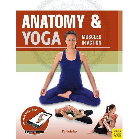 Anatomy & Yoga - by  Mireia Patino Coll (Paperback) - image 1 of 1