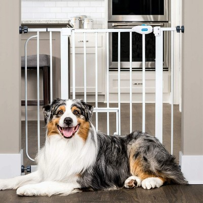 Carlson Pet Products 0930PW 36-Inch Extra Wide Pet Gate with Lift Handle and 8 x 8-Inch Small Pet Door