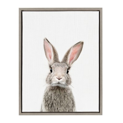 Kate & Laurel 24 x18  Sylvie Female Baby Bunny Rabbit Animal Print Portrait By Amy Peterson Framed Wall Canvas Gray