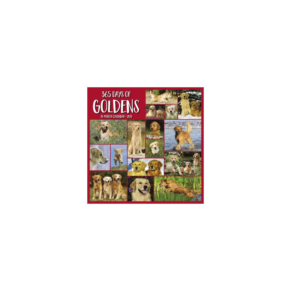 365 Days of Goldens 2019 Calendar - (Paperback)