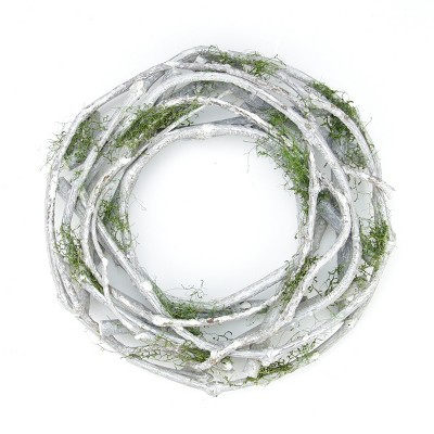 "Northlight 11"" Unlit White Twig and Green Moss Artificial Christmas Wreath"