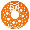 Flying Discs BYA Sports -Green Tangerine Pink - image 3 of 4