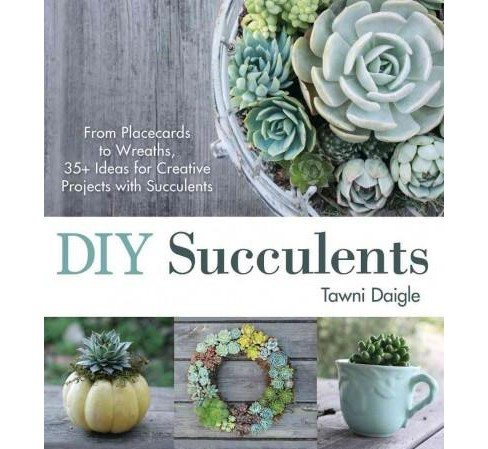 DIY Succulents : From Placecards to Wreaths, 35+ Ideas for Creative Projects With Succulents (Paperback) - image 1 of 1