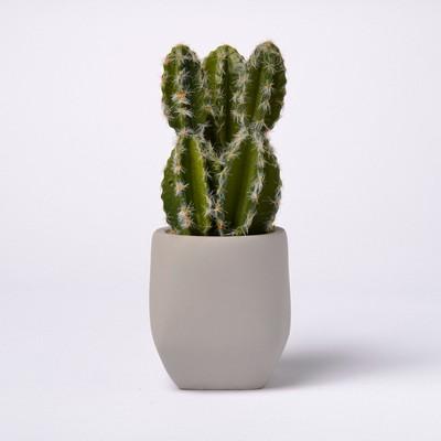 Artificial Cactus in Cement Pot - Lloyd & Hannah