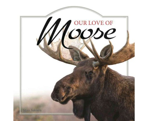 Our Love of Moose (Hardcover) - image 1 of 1