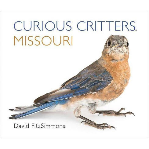 Missouri - (Curious Critters) by  David Fitzsimmons (Board_book) - image 1 of 1
