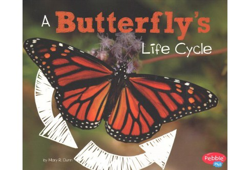 Butterfly's Life Cycle (Paperback) (Mary R. Dunn) - image 1 of 1