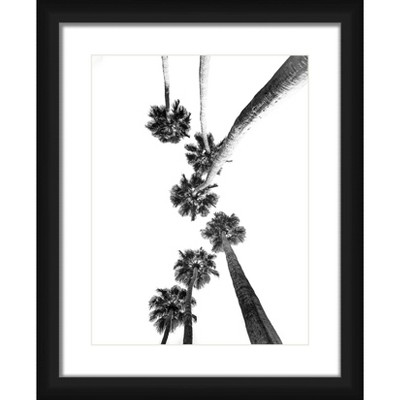 """18"""" x 22"""" Matted to 2"""" Palm Tree Picture Framed Black - PTM Images"""