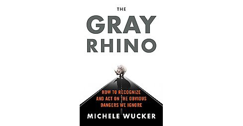 Gray Rhino : How to Recognize and Act on the Obvious Dangers We Ignore (Hardcover) (Michele Wucker) - image 1 of 1