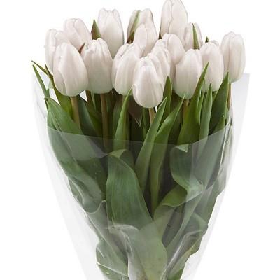 Fresh Cut White Tulips - 15ct