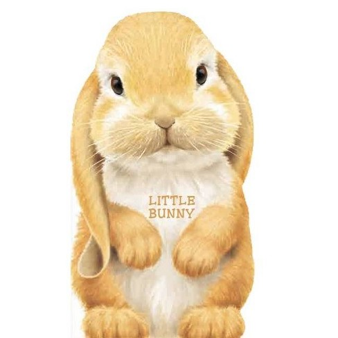 Little Bunny - (Look at Me Books) (Board_book) - image 1 of 1