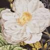 2pc Restoration Rose Printed Canvas - image 4 of 4