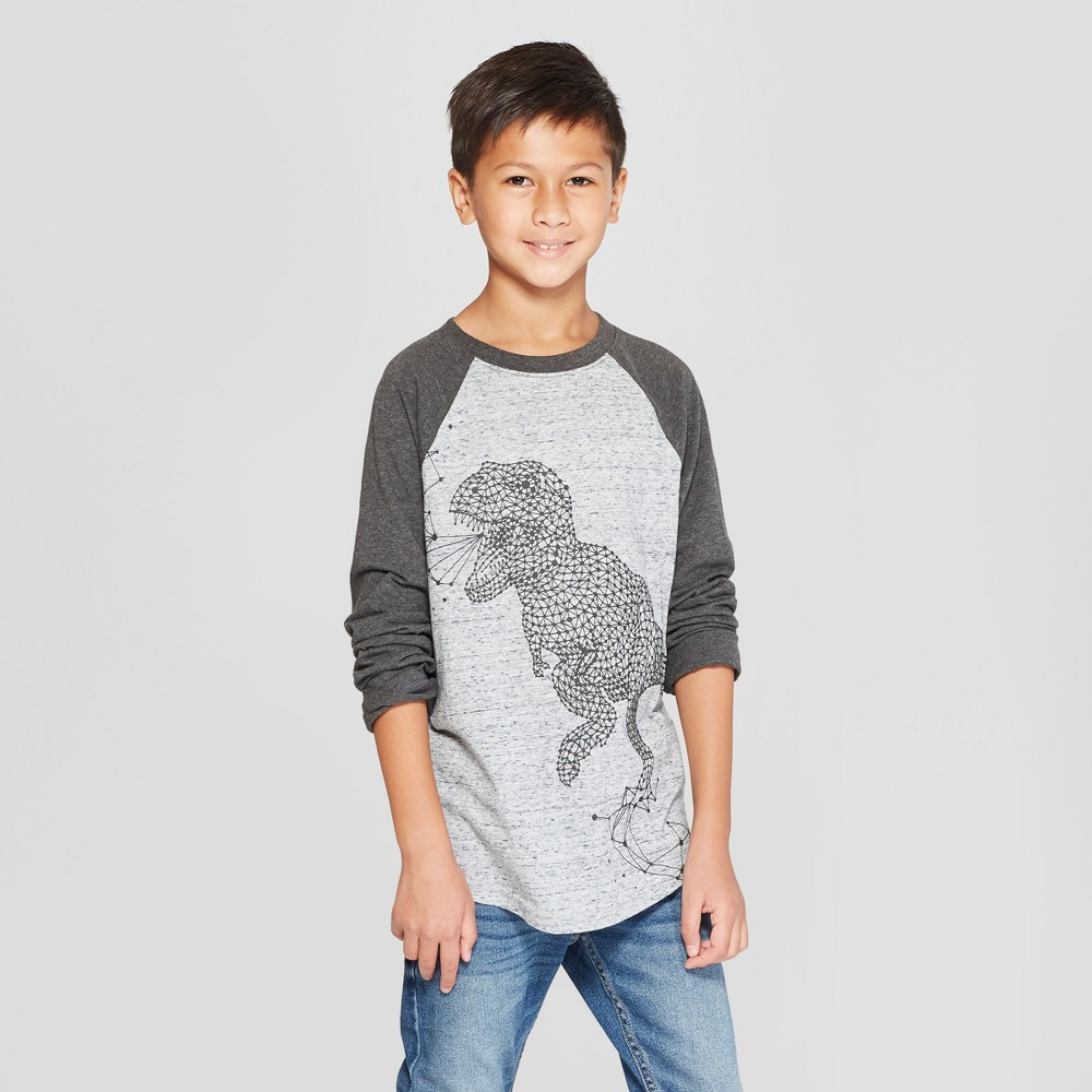 Boys' Long Sleeve Dinosaur Graphic T-Shirt - Cat & Jack Gray S