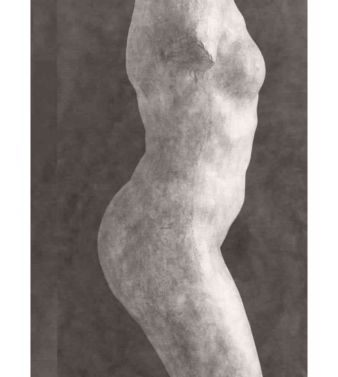 Rodin (Bilingual) (Hardcover) (Marie  Gillot) - image 1 of 1