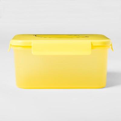 Plastic Food Storage Container Large Fruit Pattern - Room Essentials™