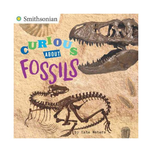 Curious about Fossils - (Smithsonian) by  Kate Waters (Paperback) - image 1 of 1