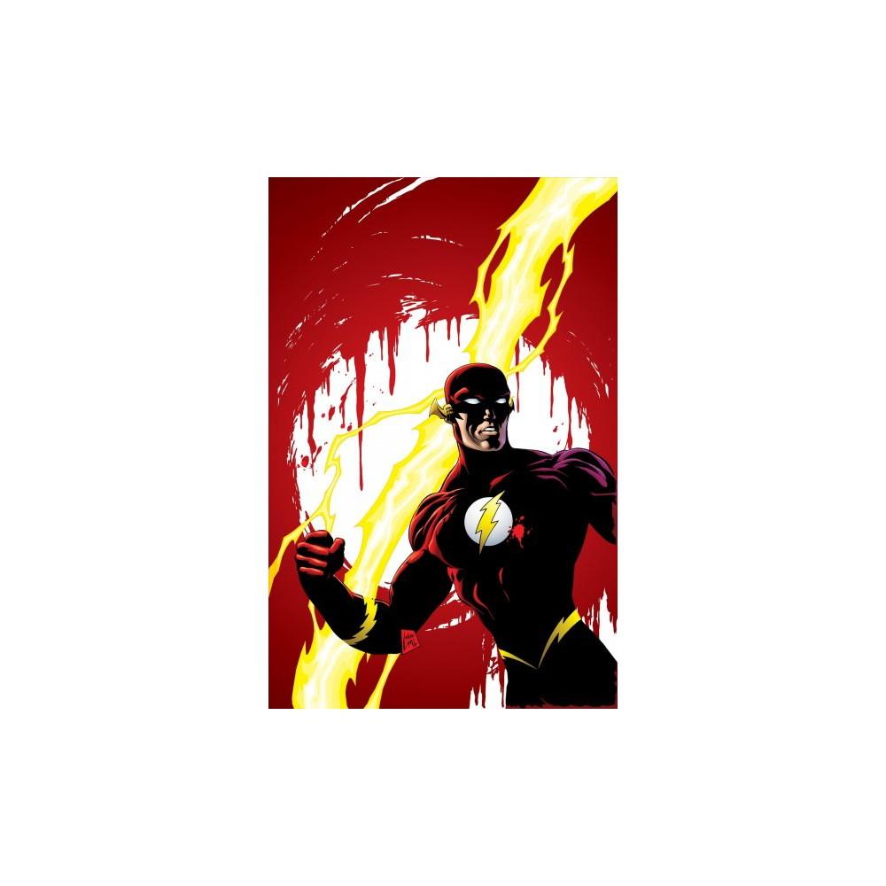 Flash 5 - (Flash) by Mark Waid & Brian Augustyn (Paperback)