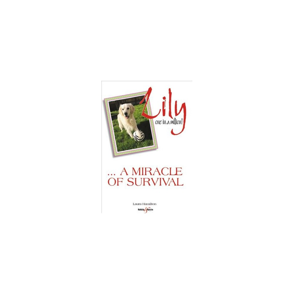Lily : A Miracle of Survival - 1 by Laura Hamilton (Paperback)