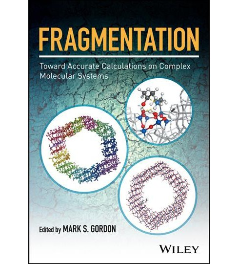 Fragmentation : Toward Accurate Calculations on Complex Molecular Systems (Hardcover) (Mark S. Gordon) - image 1 of 1