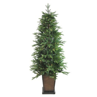 Northlight 6' Prelit Artificial Christmas Tree Potted Oregon Noble Fir - Warm White LED Lights