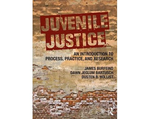 Juvenile Justice : An Introduction to Process, Practice, and Research -  (Paperback) - image 1 of 1
