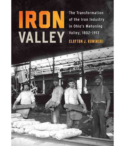 Iron Valley : The Transformation of the Iron Industry in Ohio's Mahoning Valley, 1802-1913 (Hardcover) - image 1 of 1