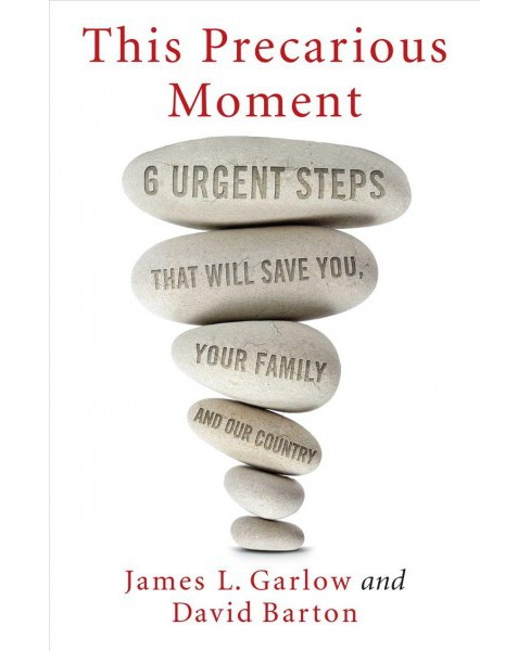 This Precarious Moment : Six Urgent Steps That Will Save You, Your Family, and Our Country - (Hardcover)  - image 1 of 1