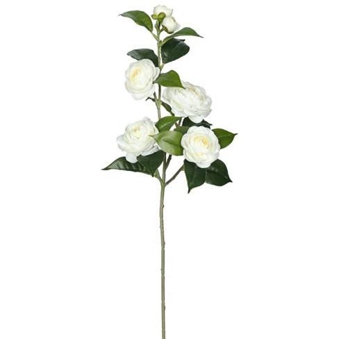 """Artificial Camellia Spray (29"""") Cream - Vickerman - image 1 of 1"""