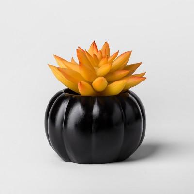 Hallow's Eve Orange Succulent - Hyde and Eek! Boutique™