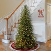 6.5ft National Christmas Tree Company Dunhill Fir Artificial Christmas Tree 500ct Bulb Clear - image 3 of 4