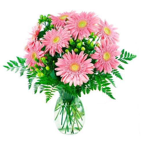 KaBloom Cinderella Daisies Fresh Flower Arrangement  - with Vase - image 1 of 1