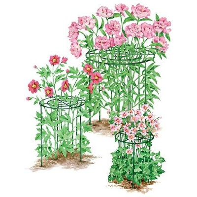 """Heavy Duty 24"""" Grow Through Flower and Plant Supports, Set of 3 - Gardener's Supply Co."""