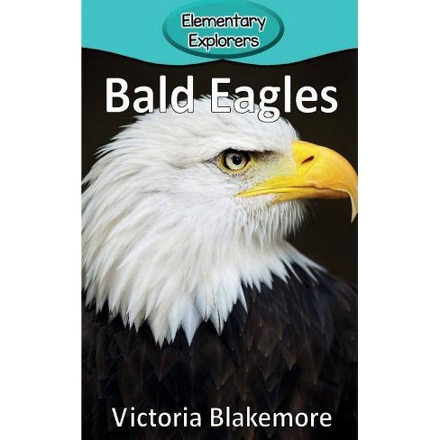 Bald Eagles - (Elementary Explorers) by  Victoria Blakemore (Hardcover) - image 1 of 1