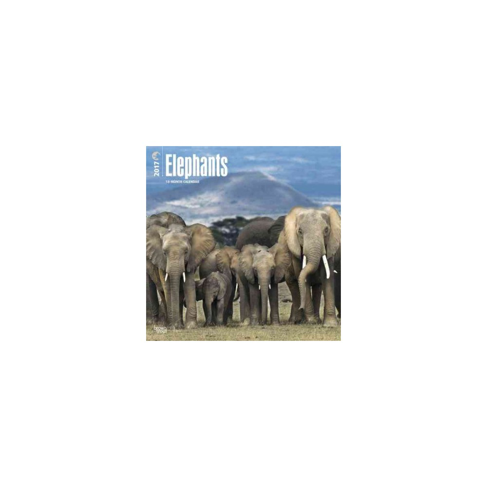 Elephants 2017 Calendar, Books