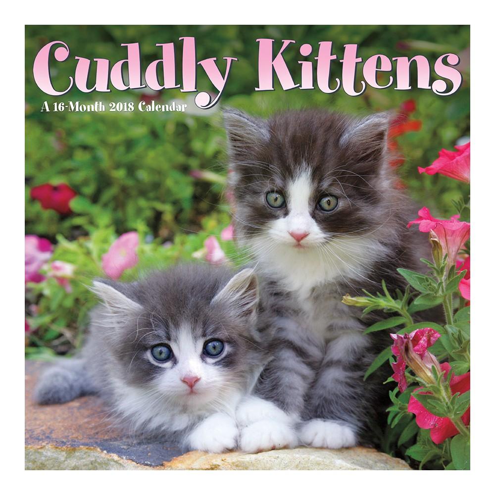 2018 Cuddly Kittens Wall Calendar - Trends International, Multi-Colored