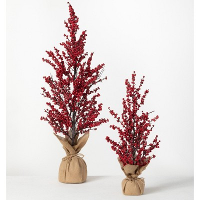"""Sullivans 3' & 1.8' Berry Artificial Tree Set of 2, 22""""H & 36""""H Red"""